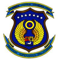 Fuerza Armadas Venezolanas